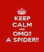 KEEP CALM AND OMG!! A SPIDER!! - Personalised Poster A1 size