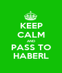 KEEP CALM AND PASS TO HABERL - Personalised Poster A1 size