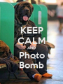 KEEP CALM AND Photo Bomb - Personalised Poster A1 size