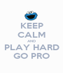 KEEP CALM AND PLAY HARD GO PRO - Personalised Poster A1 size
