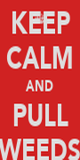 KEEP CALM AND PULL WEEDS - Personalised Poster A1 size