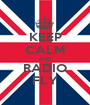 KEEP CALM AND RADIO FLY - Personalised Poster A1 size