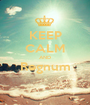 KEEP CALM AND Regnum  - Personalised Poster A1 size