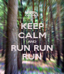 KEEP CALM AND RUN RUN RUN - Personalised Poster A1 size