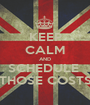 KEEP CALM AND SCHEDULE  THOSE COSTS - Personalised Poster A1 size