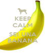KEEP CALM AND SEI UNA BANANA - Personalised Poster A1 size