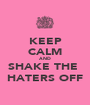 KEEP CALM AND SHAKE THE  HATERS OFF - Personalised Poster A1 size