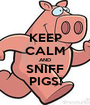 KEEP CALM AND SNIFF PIGS! - Personalised Poster A1 size