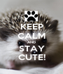 KEEP CALM AND STAY CUTE! - Personalised Poster A1 size
