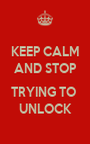 KEEP CALM AND STOP  TRYING TO  UNLOCK - Personalised Poster A1 size