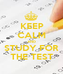 KEEP CALM AND STUDY FOR THE TEST - Personalised Poster A1 size