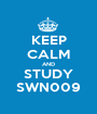 KEEP CALM AND STUDY SWN009 - Personalised Poster A1 size
