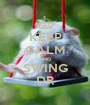 KEEP CALM AND SWING DR - Personalised Poster A1 size