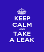 KEEP CALM AND TAKE A LEAK - Personalised Poster A1 size