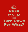KEEP CALM AND Turn Down For What? - Personalised Poster A1 size