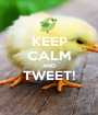 KEEP CALM AND TWEET!  - Personalised Poster A1 size