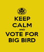 KEEP CALM AND VOTE FOR BIG BIRD - Personalised Poster A1 size