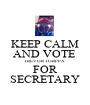 KEEP CALM AND VOTE  TREVOR TORPPA  FOR SECRETARY - Personalised Poster A1 size