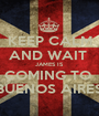 KEEP CALM AND WAIT  JAMES IS COMING TO  BUENOS AIRES - Personalised Poster A1 size