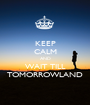 KEEP CALM AND WAIT TILL TOMORROWLAND - Personalised Poster A1 size