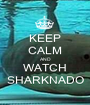KEEP CALM AND WATCH SHARKNADO - Personalised Poster A1 size