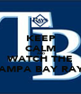KEEP CALM AND WATCH THE TAMPA BAY RAYS - Personalised Poster A1 size