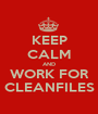 KEEP CALM AND WORK FOR CLEANFILES - Personalised Poster A1 size