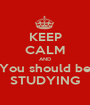 KEEP CALM AND You should be STUDYING - Personalised Poster A1 size
