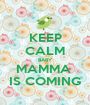 KEEP CALM BABY MAMMA  IS COMING - Personalised Poster A1 size