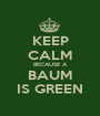 KEEP CALM BECAUSE A BAUM IS GREEN - Personalised Poster A1 size