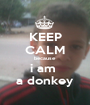KEEP CALM because i am  a donkey - Personalised Poster A1 size