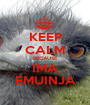 KEEP CALM BECAUSE IMA EMUINJA - Personalised Poster A1 size