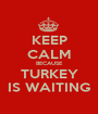KEEP CALM BECAUSE TURKEY IS WAITING - Personalised Poster A1 size