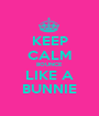 KEEP CALM BOUNCE LIKE A BUNNIE - Personalised Poster A1 size