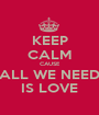 KEEP CALM CAUSE ALL WE NEED IS LOVE - Personalised Poster A1 size