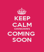 KEEP CALM CHINCHIN'S COMING  SOON - Personalised Poster A1 size