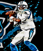 KEEP CALM cotron love the  panthers - Personalised Poster A1 size