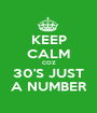 KEEP CALM COZ 30'S JUST A NUMBER - Personalised Poster A1 size