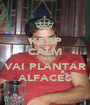 KEEP CALM E VAI PLANTAR ALFACES - Personalised Poster A1 size