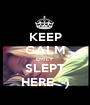 KEEP CALM EMILY SLEPT HERE :-) - Personalised Poster A1 size