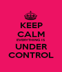 KEEP CALM EVERYTHING IS UNDER CONTROL - Personalised Poster A1 size