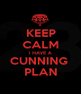 KEEP CALM I HAVE A  CUNNING  PLAN - Personalised Poster A1 size