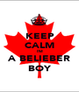 KEEP CALM I'M A BELIEBER BOY - Personalised Poster A1 size