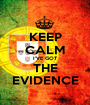 KEEP CALM I'VE GOT THE EVIDENCE - Personalised Poster A1 size