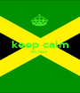 keep calm im fast.   - Personalised Poster A1 size