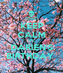 KEEP CALM IT'S DARIEN'S BIRTHDAY  - Personalised Poster A1 size
