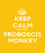 KEEP CALM IT'S THE PROBOSCIS MONKEY - Personalised Poster A1 size