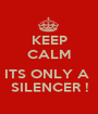 KEEP CALM  ITS ONLY A  SILENCER ! - Personalised Poster A1 size
