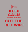 KEEP CALM (or was it blue?) CUT THE  RED WIRE - Personalised Poster A1 size