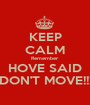 KEEP CALM Remember HOVE SAID DON'T MOVE!!! - Personalised Poster A1 size